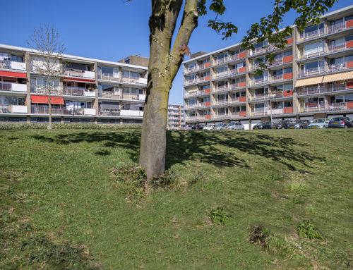 Malvert 61e straat – Nijmegen